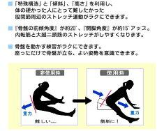 サンテプラス・フレックスクッション&DVDセット【送料無料】