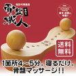 骨盤職人 ペルビス PV01【マッサージ】【送料無料】