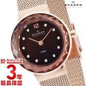 【先着5000枚限定200円割引クーポン】スカーゲン SKAGEN クラシック 456SRR1 [海外輸入品] レディース 腕時計 時計