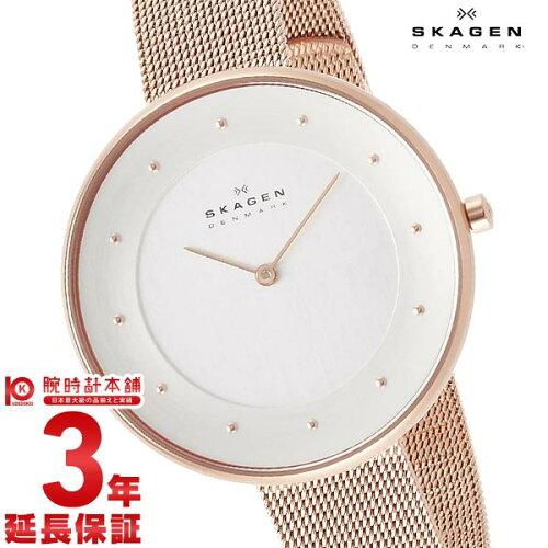 スカーゲン SKAGEN SKW2142 [海外輸入品] レディース 腕時計 時計