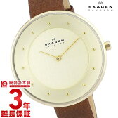 【先着5000枚限定200円割引クーポン】スカーゲン SKAGEN クラシック SKW2138 [海外輸入品] レディース 腕時計 時計