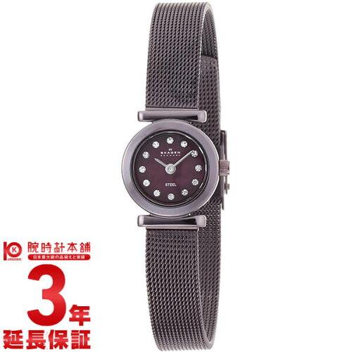 スカーゲン SKAGEN ステンレス 107XSMM1 [海外輸入品] レディース 腕時計 時計