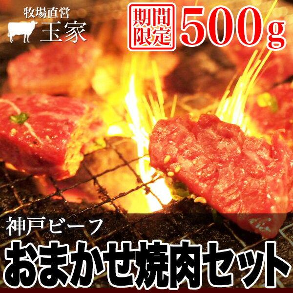 【神戸ビーフ ギフト】【期間限定】神戸牛 おまかせ焼肉セット 500g(冷凍)国産 牛肉 焼肉 BBQ 黒毛和牛