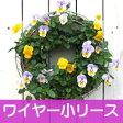 【ワイヤー小セット】◎型 ハンギングバスケット メッシュタイプ[FMP01-30G]