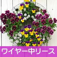 【ワイヤー中セット】◎型 ハンギングバスケット メッシュタイプ[FMP01-35G]