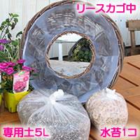 【定番中 リース セット】花苗で作る ハンギングリース