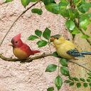 可愛い小鳥・クリップバード・オーナメント【屋外用】ツリーバード5種アソート(11761)