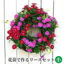 [定番 小] リース セット 花苗で作る ハンギングリース