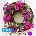 [お試し] 中 リース セット 花苗で作る ハンギングリース 壁掛け 鉢