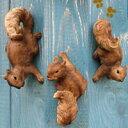 可愛いリスのオーナメント(玄関/ポーチ/お庭/ラティス/壁に)壁掛けオーナメント:木登り リ...