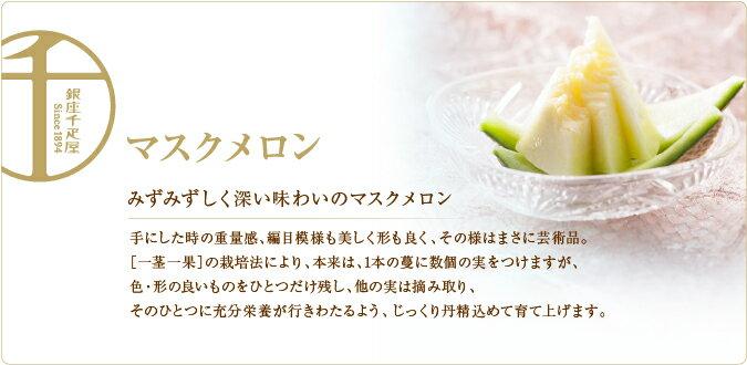 銀座千疋屋特選 マスクメロン(桐箱) 1個入[約1.5kg~][ギフト][内祝い]