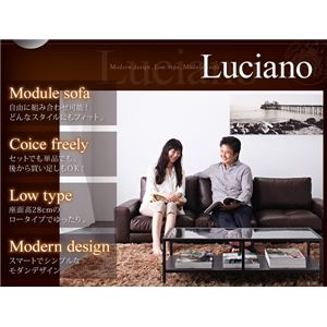 【送料無料】ソファーセット3人掛け肘なしダークブラウンモジュールローソファ【Luciano】ルチアーノ【セット】
