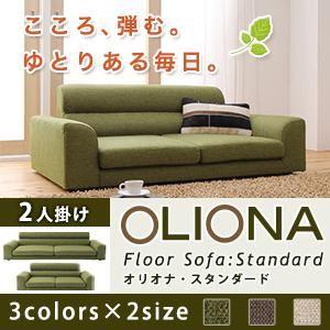 【送料無料】フロアソファ【OLIONAStandard】オリオナ・スタンダード2人掛けブラウン