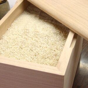 泉州留河桐の米びつ無地30kg
