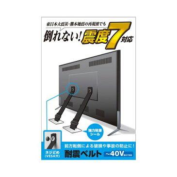エレコム TV用耐震ベルト/〜40V用/ネジどめタイプ(VESA穴)/2本入 TS-005N