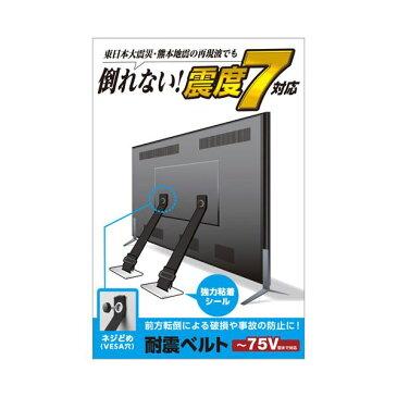 エレコム TV用耐震ベルト/〜75V用/ネジどめタイプ(VESA穴)/2本入 TS-006N