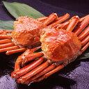 【身入り抜群のA級品!】カナダ産ボイルズワイガニ姿・約600g×2尾 冷凍ズワイ蟹