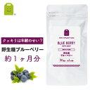 ブルーベリー サプリメント 【メール便送料無料】 ブルーベリ