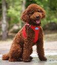 スイスの高級ドッグブランド【Curli】 ベストエアメッシュハーネス【VEST AIR MESH HARNESS】 小型犬用サイズ