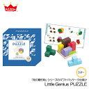 リトルジーニアス(パズル) Little Genius PUZZLE 知育玩具 教育玩具 ブロック 賢人パズル 立体パズル 誕生日プレゼント クリスマスプレゼント