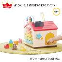【びっくり特典あり】ようこそ!森のわくわくハウス エドインター 知育玩具 教育玩具 遊び箱 ビーズコースター ブロックあそび 森のあそび道具シリーズ