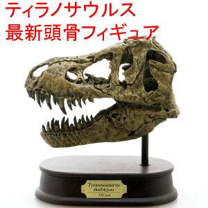 最新の学説でリデザインした頭骨モデル!FDS651 ティラノサウルス/スカル&ジョーズ モデル(70...
