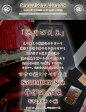 S510MOG18OZ-スペシャル限定井伊の赤鬼モデル-SAMURAIJEANS-サムライジーンズデニムジーンズ【送料無料】【smtb-tk】【楽ギフ_包装】