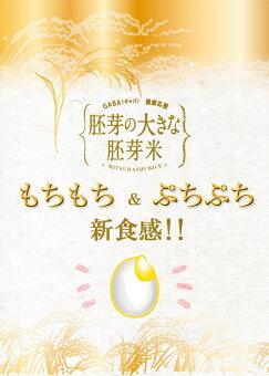 胚芽の大きな胚芽米2kg×2袋【送料無料!】