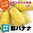 島バナナ【送料無料】【フルーツ】沖縄県宮古島産島バナナ 1kg(ぶら下げ用ヒモ・フック付き)