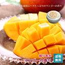 練り香水_南国の香り♪<マンゴー>(8g)【ゆうメール_送料無料】