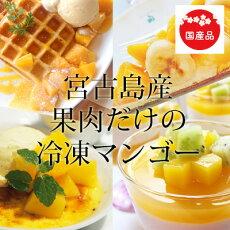 冷凍マンゴー1kg濃厚な甘さの本場宮古島産冷凍マンゴーカットマンゴー完熟マンゴー冷凍フルーツデザート業務用冷凍食品レシピ