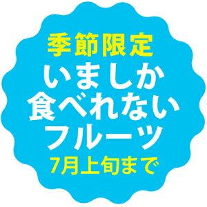 もぎたて宮古島産!秀品マンゴー1kg(2〜3玉)マンゴーの収穫量日本一の宮古島より直送!!【送料無料】【お中元】【贈答】【夏フルーツ】