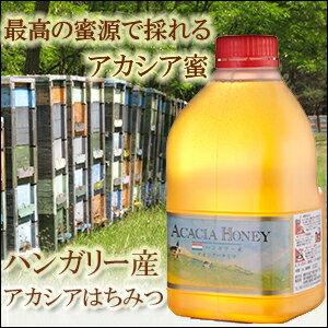 ハンガリー産アカシア蜂蜜 2kgはちみつ【送料無料】【専門店蜂蜜】