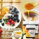 【即納】ニュージーランド産 マヌカハニーUMF10+(MGO263+)250g×3個 送料無料 | はちみつ ハチミツ 純粋蜂蜜 食品 健康 ハニー 人気 熊手のはちみつ 熊手 老舗 リピータ多数 使いやすい HACCP取得 希少蜂蜜 まとめ買い
