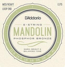 【ゆうパケット・送料無料】【D'Addario (ダダリオ)】【マンドリン弦】フォスファーブロンズ Medium Heavy .0115-.041 EJ75