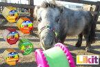 【5/3 再入荷】【LIKIT(リキット)】リフィル650グラム(詰替え用)馬、ロバ用おやつ/ポニー/ミニチュアホース/乗馬用品・厩舎用品/馬のオモチャ