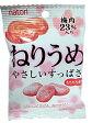 100円 27gねり梅 10袋入【駄菓子】