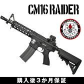 g&g 電動ガン CM16 Raider G&G ARMAMENT エアソフトガン【3か月保証】【送料無料】