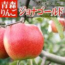 青森県弘前りんご ジョナゴールドわけあり家庭用