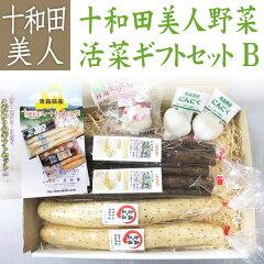 送料無料!十和田野菜詰め合わせギフトB 長いも2本 牛蒡2袋 にんにく小2玉 レンジニンニク1...