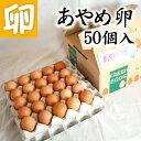 あやめ卵 50個 たまごかけごはん専用高級玉子!! あんしん やさしい うめぇ たまごです♪【鶏卵 お買い得 訳あり ランキング ギフト お試し 卵かけご飯 産みたて 生みたて たまご 卵 玉子 エッグ egg】【RCP】