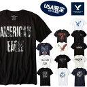 【American Eagle】アメリカンイーグルメンズ AE 半袖 Tシャツ(ae77) アメカジ アメリカ ブランド