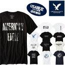 【American Eagle】アメリカンイーグル正規品 メンズ AE...