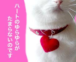 ネコ用首輪 ネコ 首輪 可愛さ満点♪キューティーハート おしゃれ猫首輪 Mサイズ 猫用・ネコ用・ねこ用