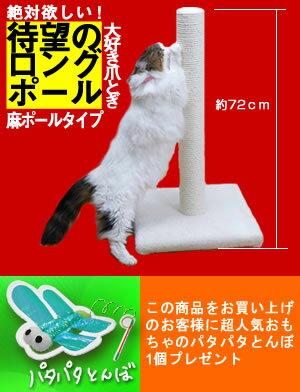 【待望のロングポール爪とぎ~高さ約72cmポール型つめとぎ~こんなの欲しかった!パタパタとん...