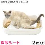 猫用 採尿シート (2枚入) 尿検査 採尿器が難しい猫ちゃんに (27966)