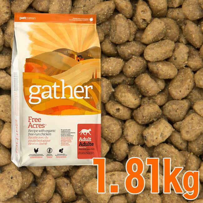 gather ギャザー キャット フリーエーカー 1.81kg 猫用(08105)