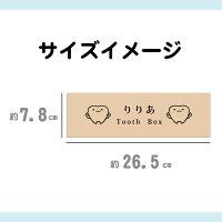 乳歯ケースサイズイメージ