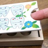 乳歯ケース使用方法説明