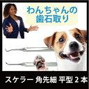 [定形外郵便等送料無料]愛犬スケラー 先細 平型 2本セット(メ1) M39M